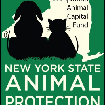 Assemblyman Santabarbara holds Press Conference on Companion Animal Capital Fund