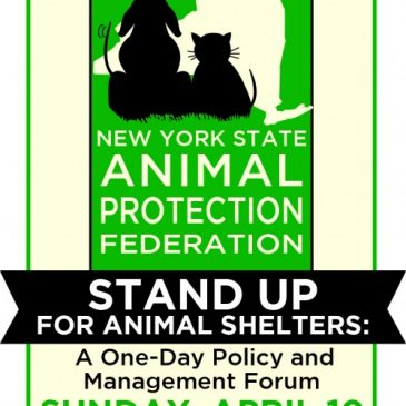 Federation Holds Stand Up for Animal Shelters Forum