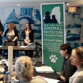 Stand Up for Animal Shelters Forum a Success